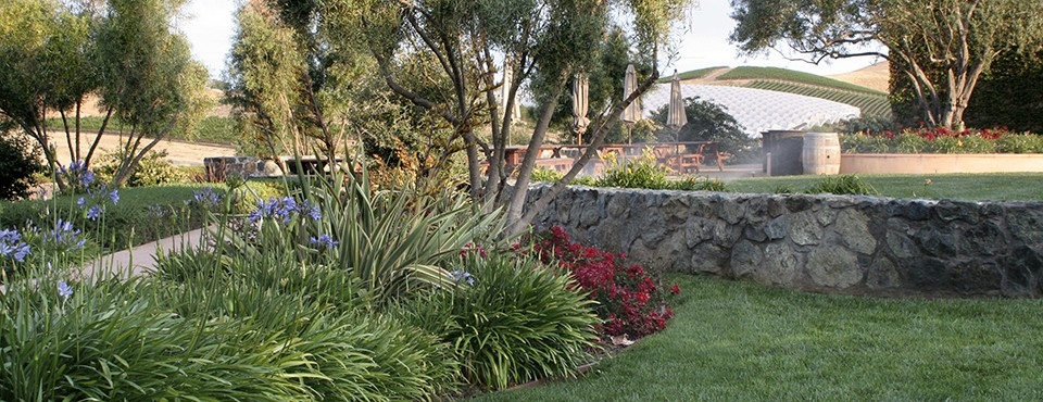Talley Winery – Arroyo Grande Landscaping Project